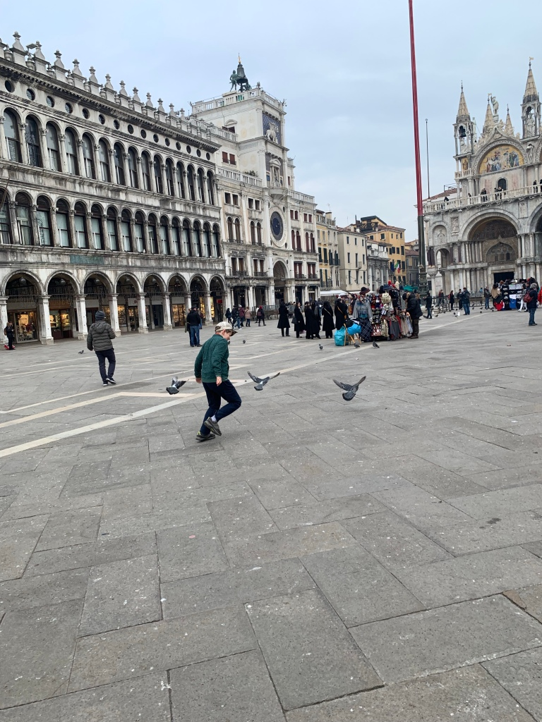 Chasing pigeons in St Mark's Square