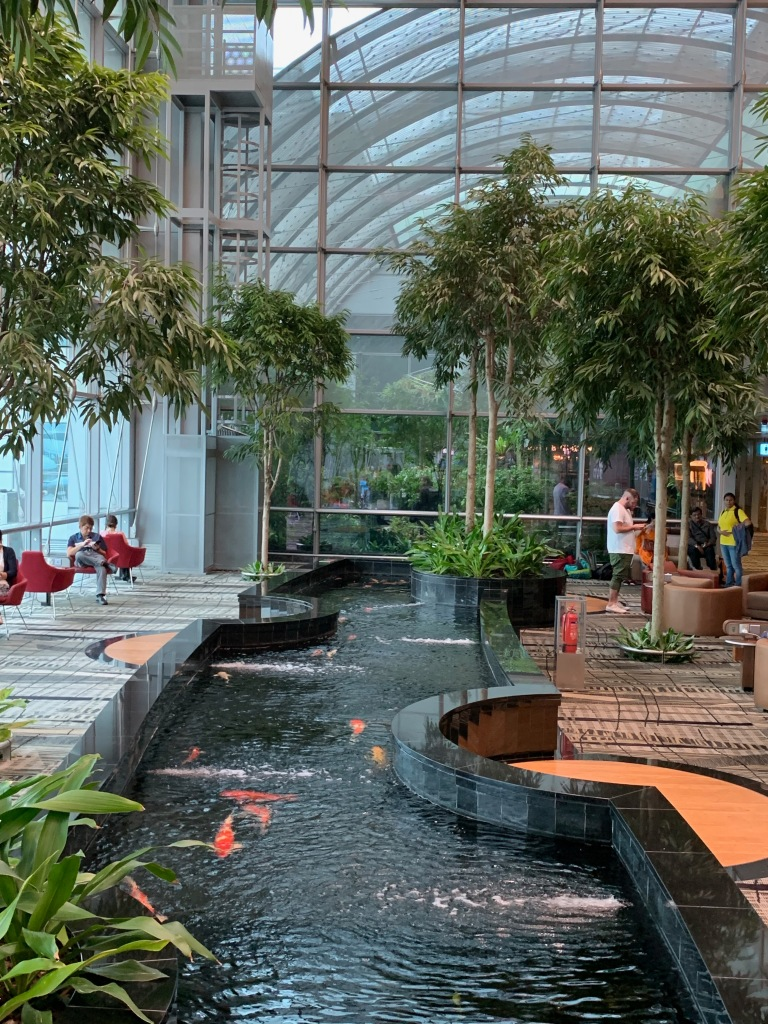 Koi pond inside Singapore Changi airport