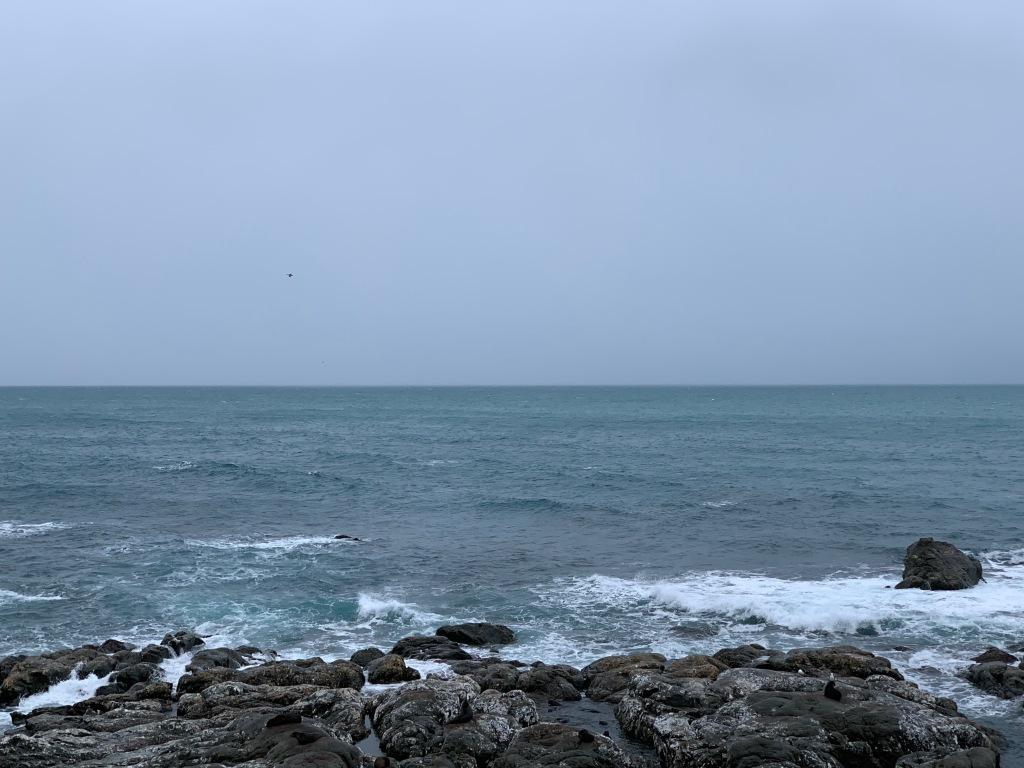Coastline near Kaikoura on a bleak winter day