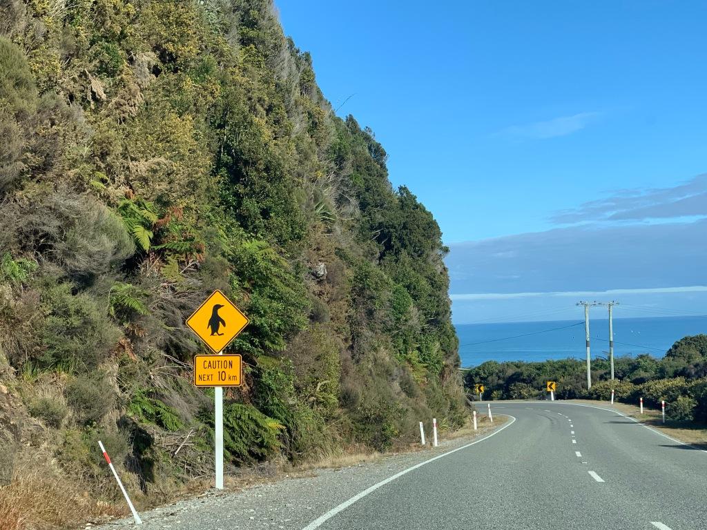 Penguin crossing sign in New Zealand