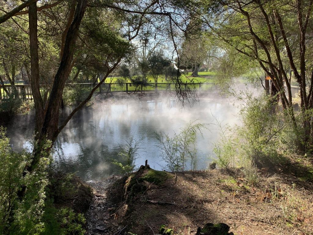 Thermal pool in Rotorua